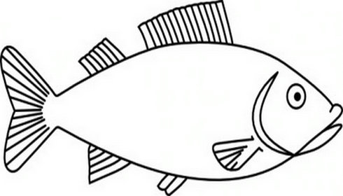 490x280 Fish Clipart Black And White