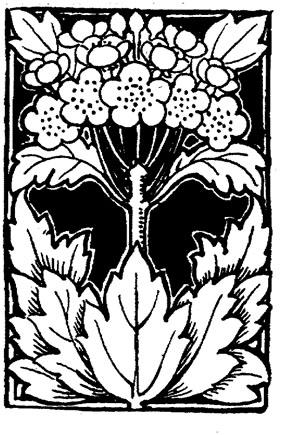 288x435 Drawings Of Flowers