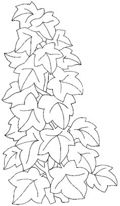 236x405 Vintage Ivy Leaves Line Art Ivy Leaf, Leaves And Vintage