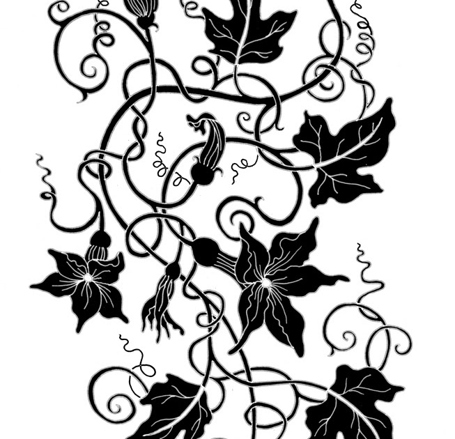Ivy Plant Drawing