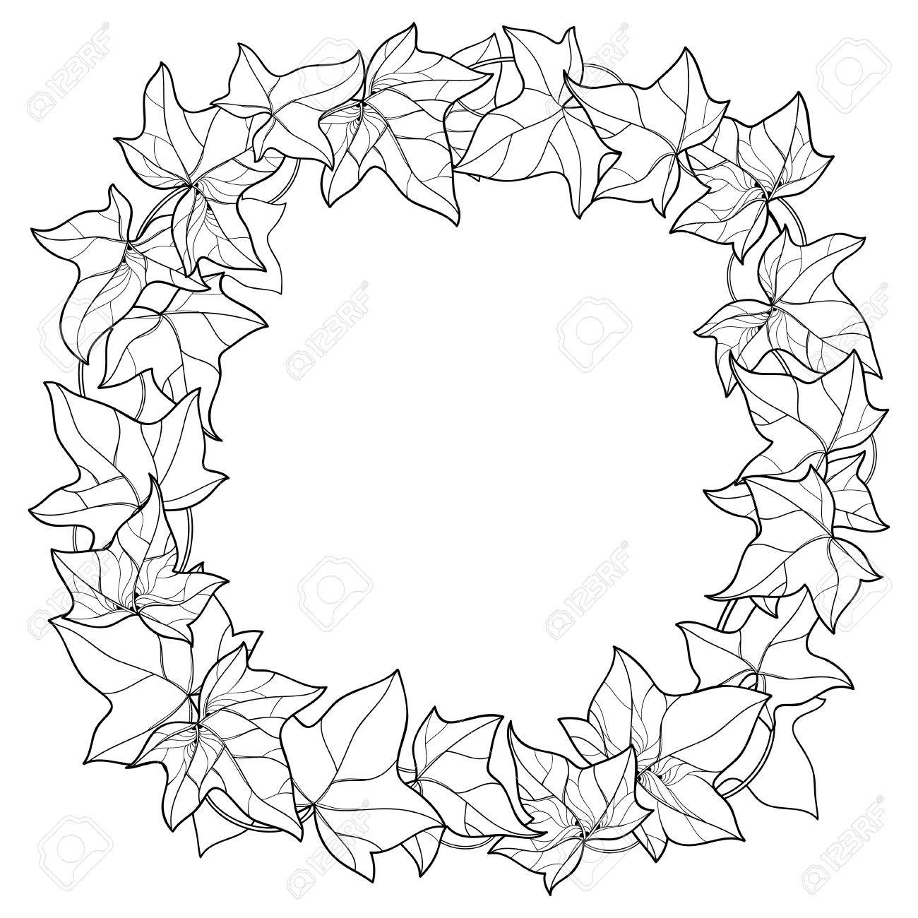 1300x1300 Round Wreath With Outline Ivy Or Hedera Foliage. Ornate Leaf