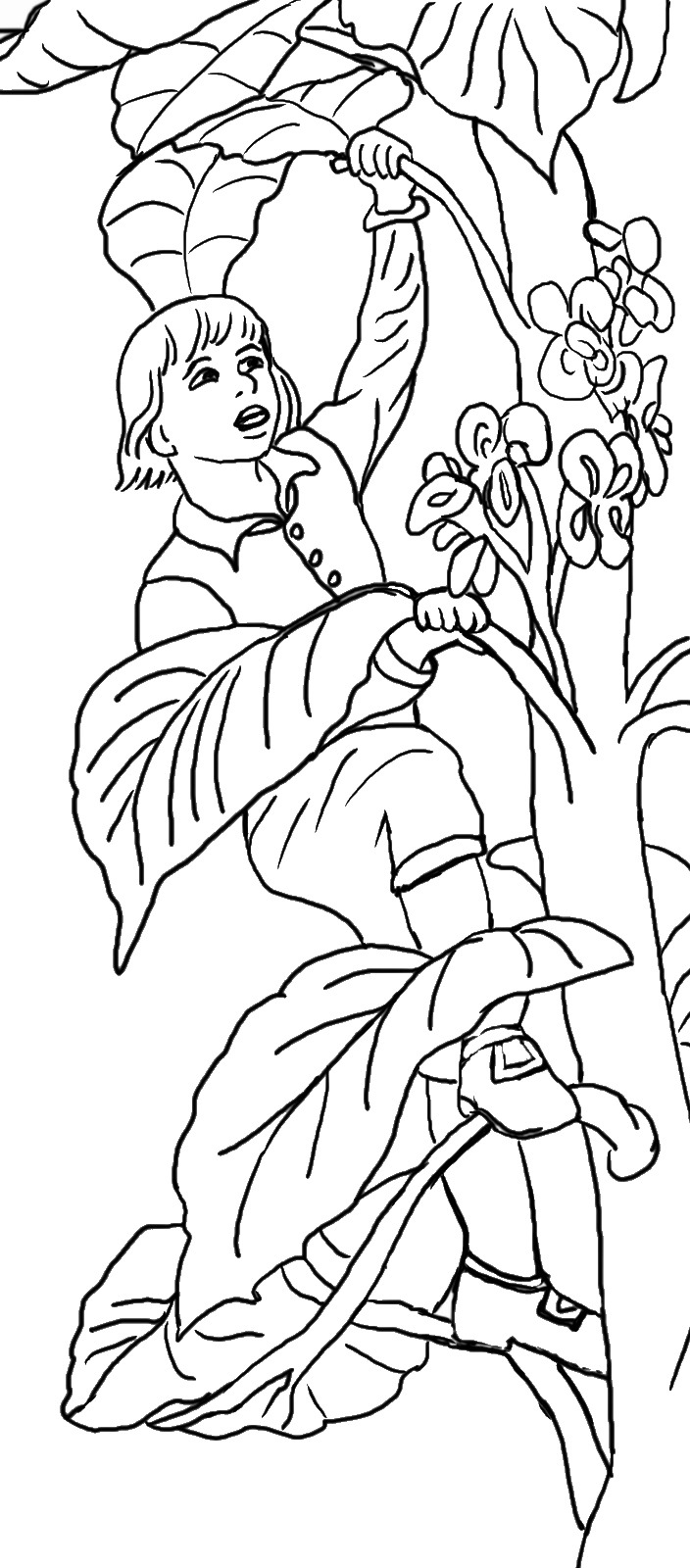Jack And The Beanstalk Drawing at GetDrawings com | Free for