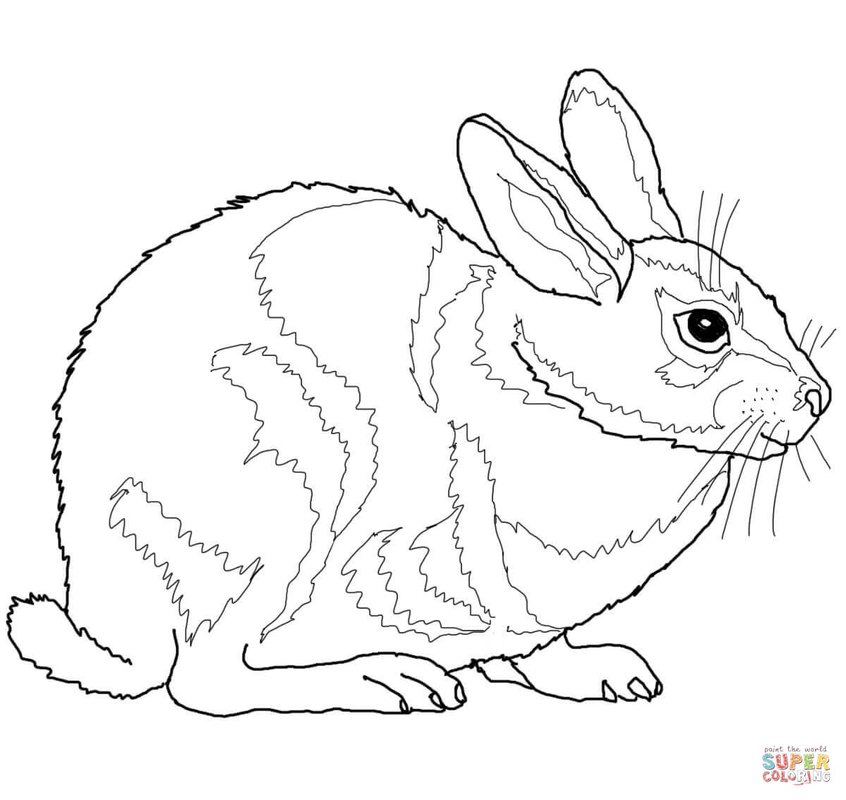1200x1136 Hare Animal Coloring Pages Of Rabbits To Print