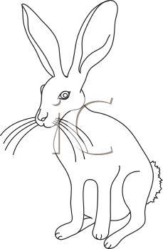 229x350 Jack Rabbit Clipart