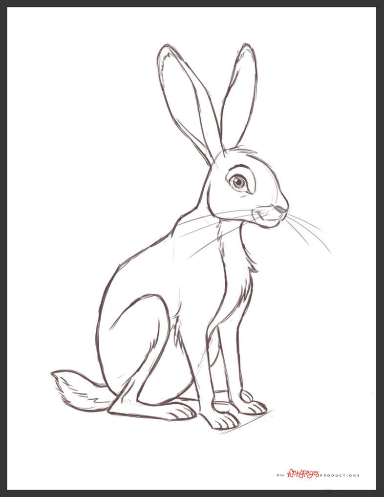786x1017 Jack Rabbit By Chewgag
