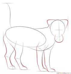 236x247 How To Draw A Jack Russell Terrier Step By Step. Drawing Tutorials