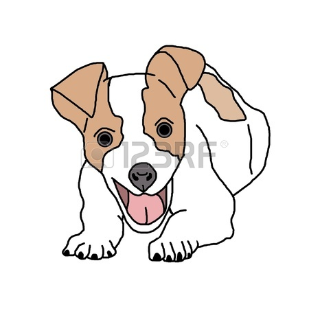 450x450 Jack Russell Dog Stock Photo, Picture And Royalty Free Image