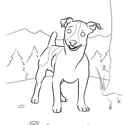 250x250 Jack Russell Terrier Coloring Page Dog Patterns
