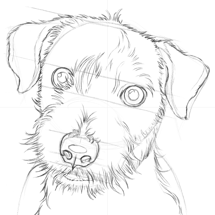 700x700 6.3.a2 Isaac The Jack Russell