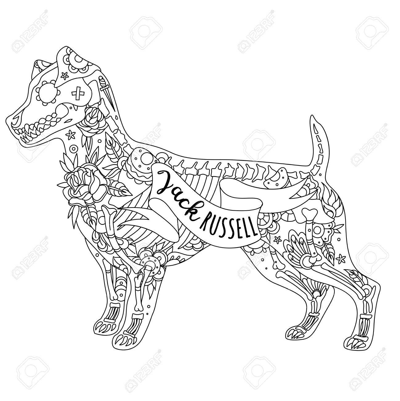 1299x1300 Stylized Skeleton Jack Russell Terrier. Jack Russell Terrier