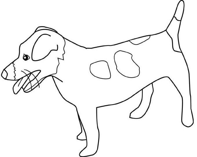 679x540 Jack Russell Terrier Art