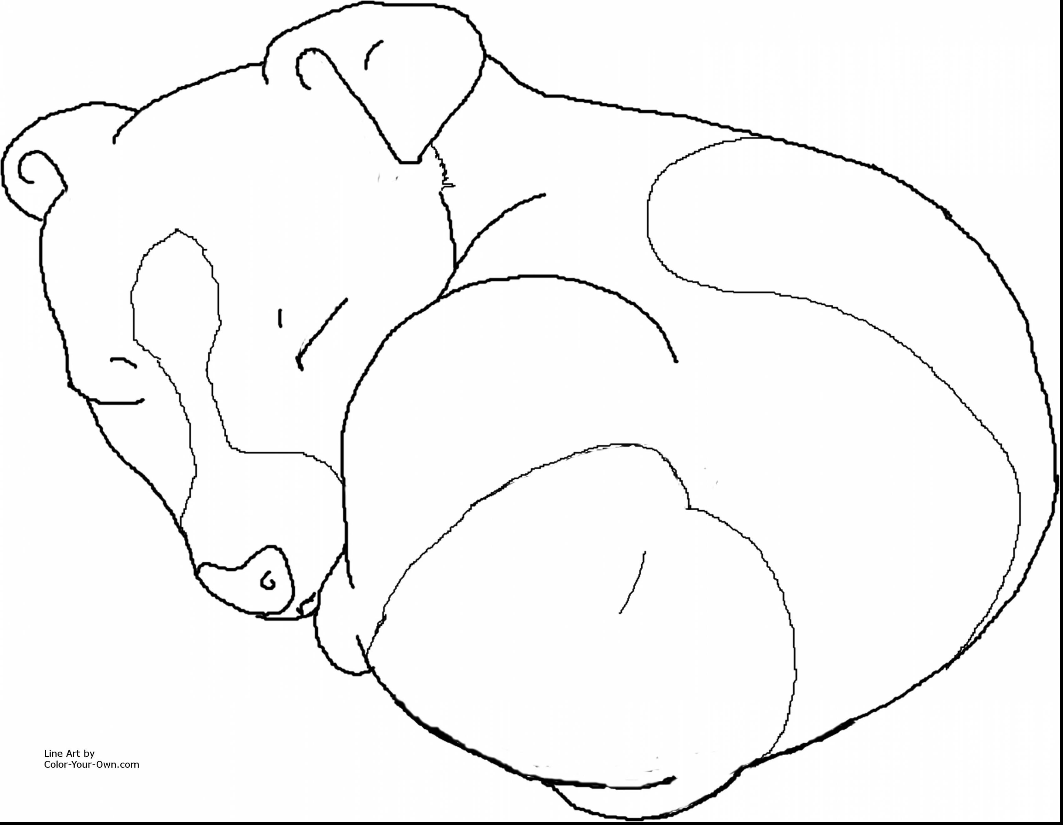 3401x2640 Terrific Jack Russell Dog Coloring Pages To Print With Coloring