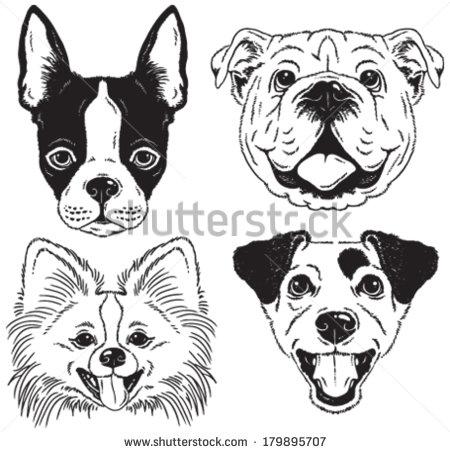 450x453 A Set Of 4 Dog's Faces Boston Terrier, English Bulldog, Toy