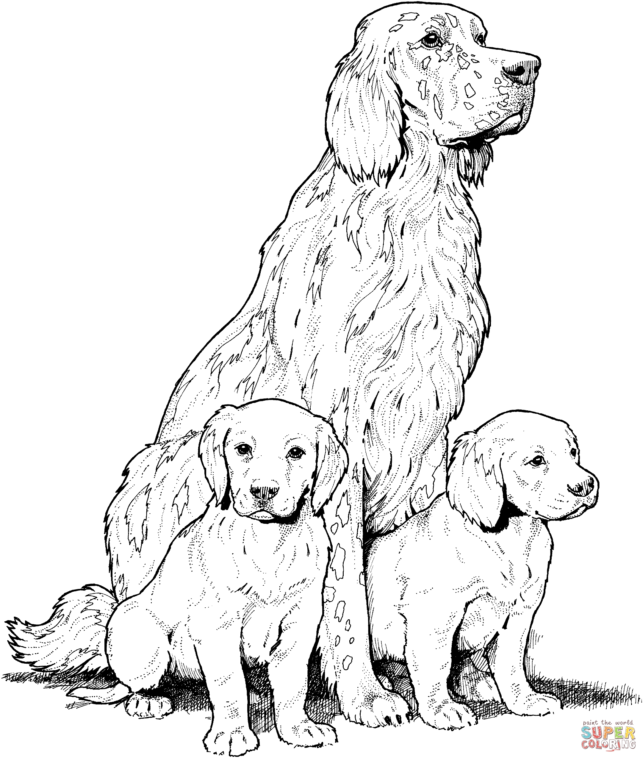 2161x2547 Newfoundland Animal Coloring Pages Page Dog Newfoundl On Jumping