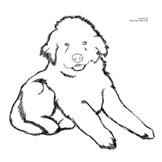 320x320 Tag For Cute Pictures Of Puppies To Color Print Easy Dog