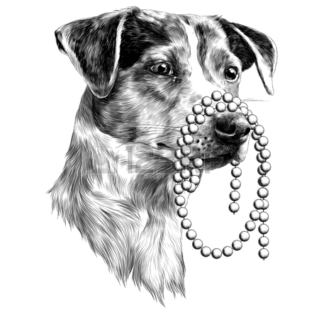 450x450 The Dog With A Beads In My Mouth. Jack Russell Terrier Head Sketch