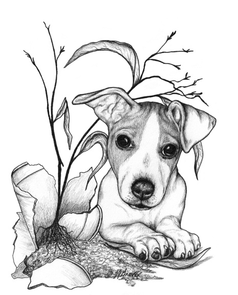 465x576 The Wonderful Artwork Of Laurie J. Grove. The Little Jack Russell
