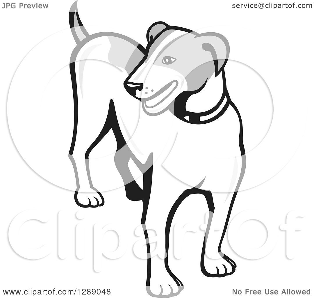 1080x1024 Clipart Of A Retro Grayscale Cartoon Jack Russell Terrier Dog