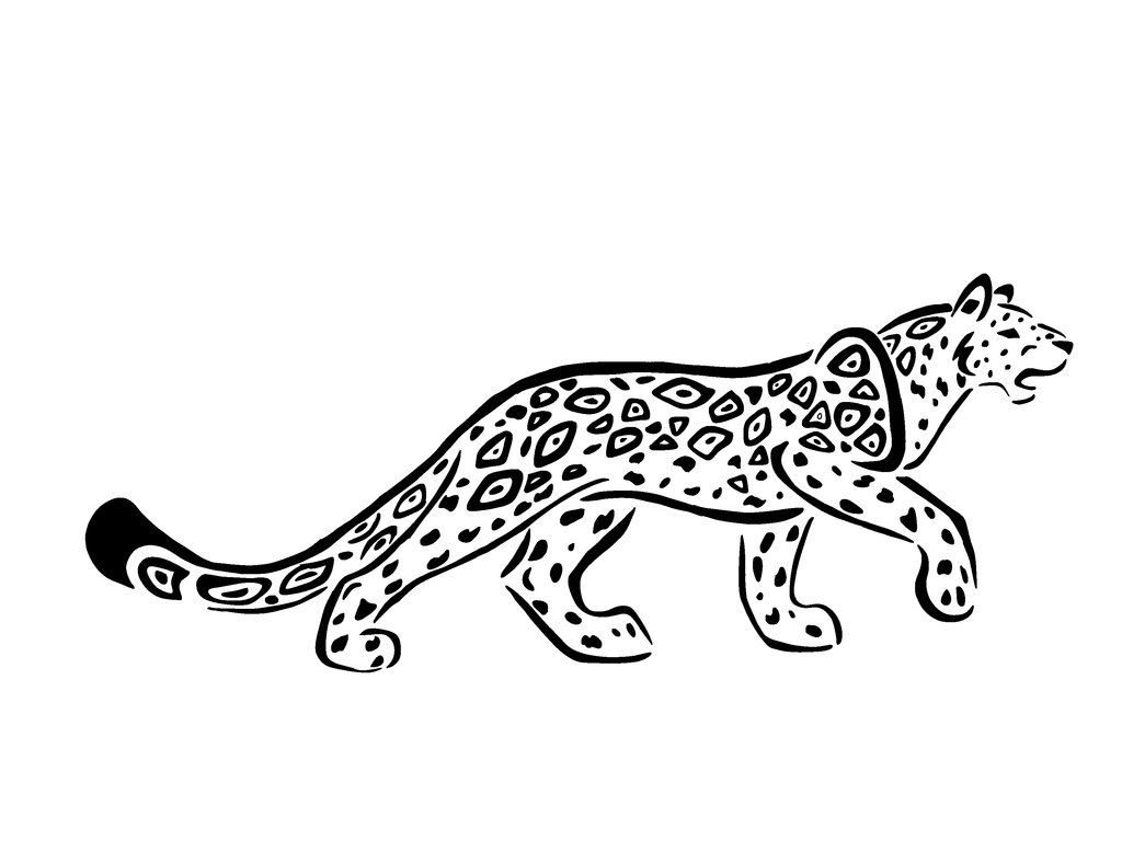 Jaguar Animal Drawing