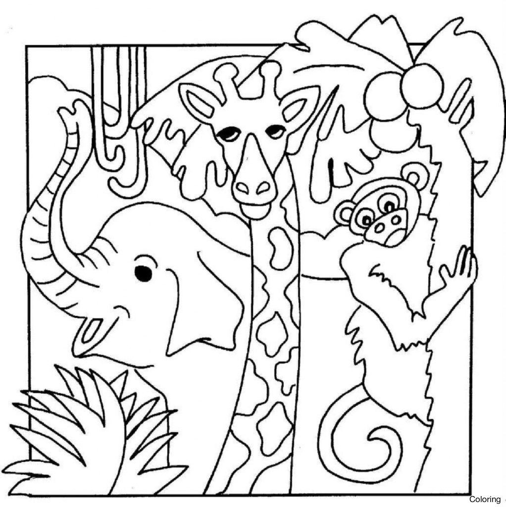 1022x1024 Drawn Forest Tropical 12 How To Draw A Rainforest Coloring Pin