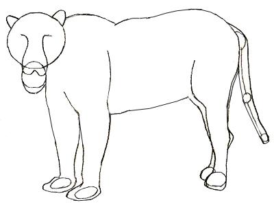 400x302 How To Draw A Jaguar