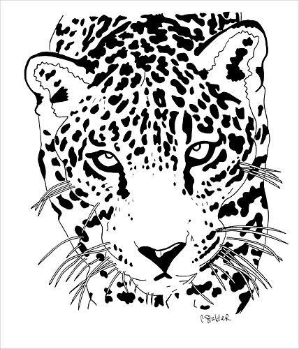 Jaguar Animal Drawing At Getdrawings Com