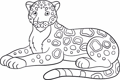 510x339 Printable Jaguar To Color And Use For Crafts