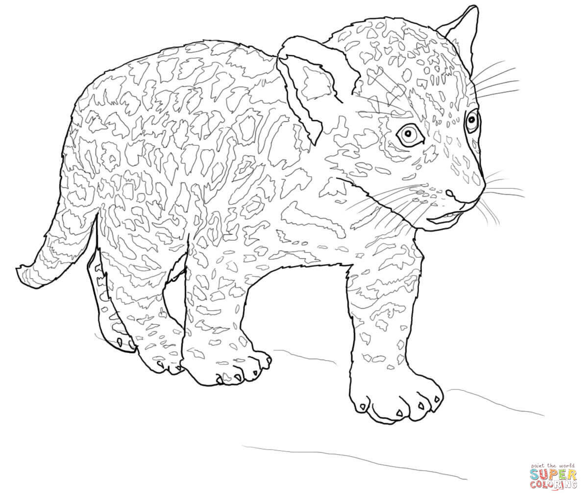 1200x1024 Baby Jaguar Coloring Page Free Printable Pages