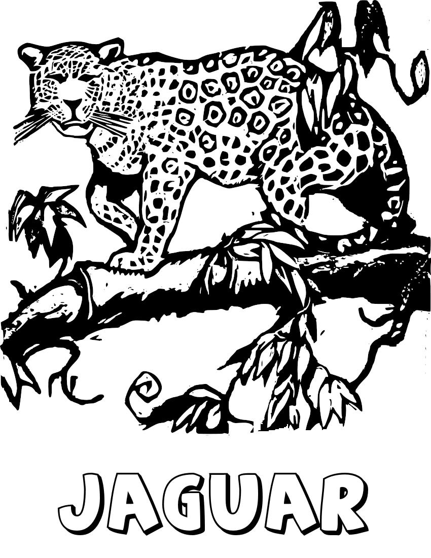 850x1100 Jaguar On Tree Limb Coloring Page