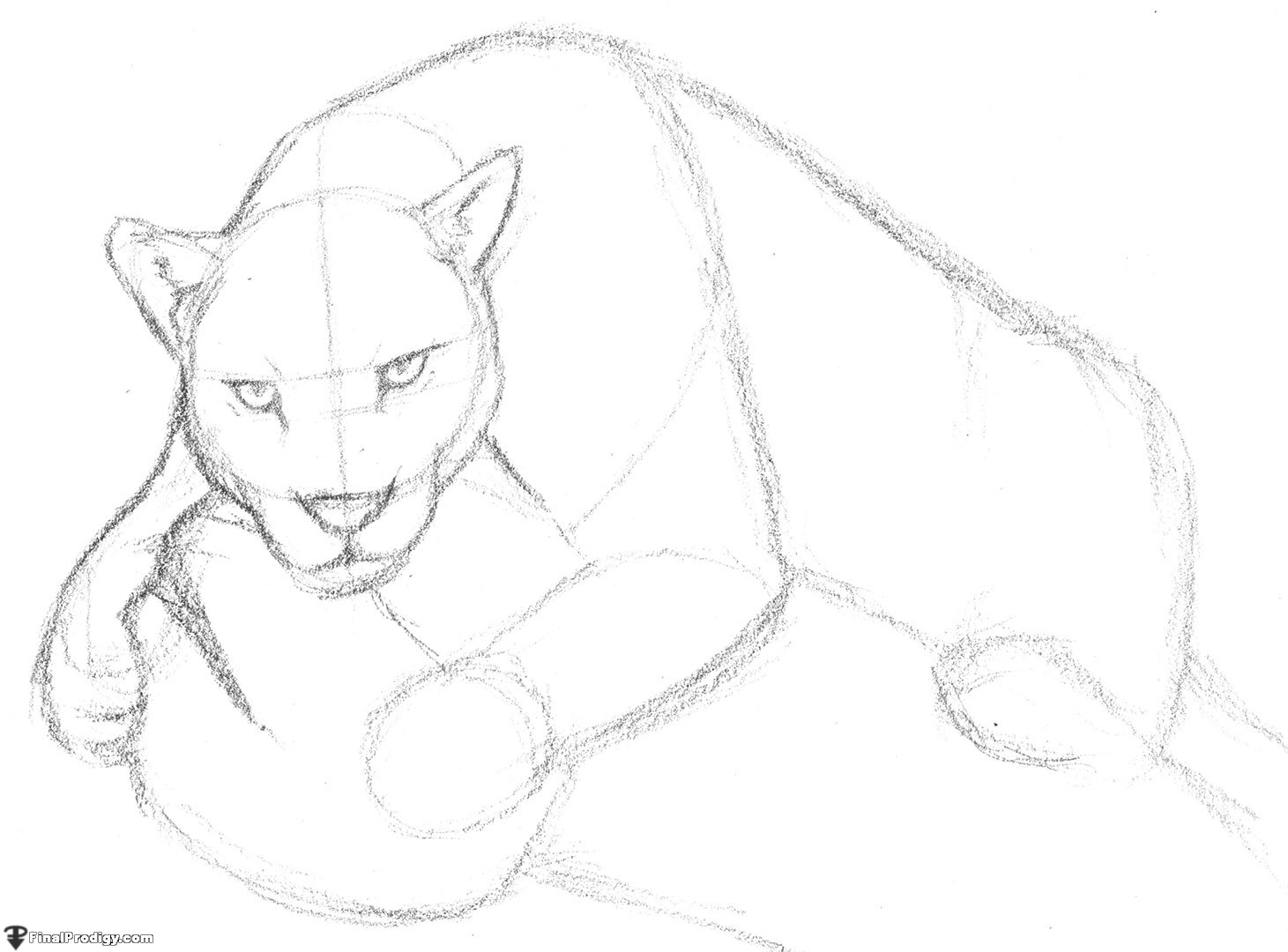 1461x1080 How To Draw A Jaguar