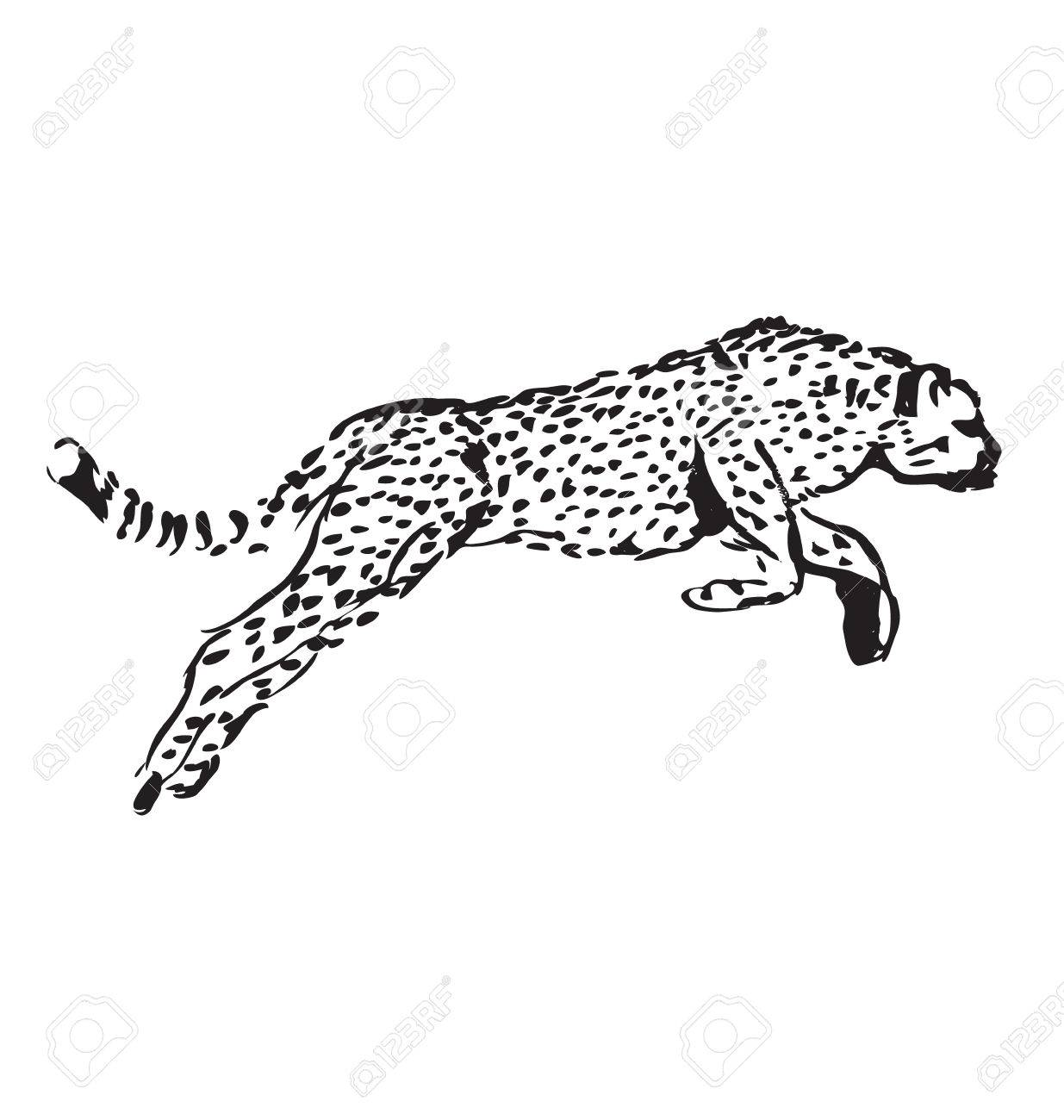 1235x1300 Hand Sketch Leaping Jaguar Royalty Free Cliparts, Vectors,