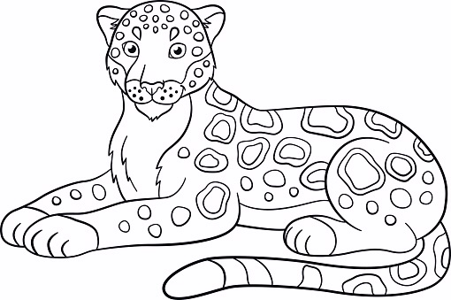510x339 Printable Jaguar Pictures Jaguar Take A Rest Coloring Pages
