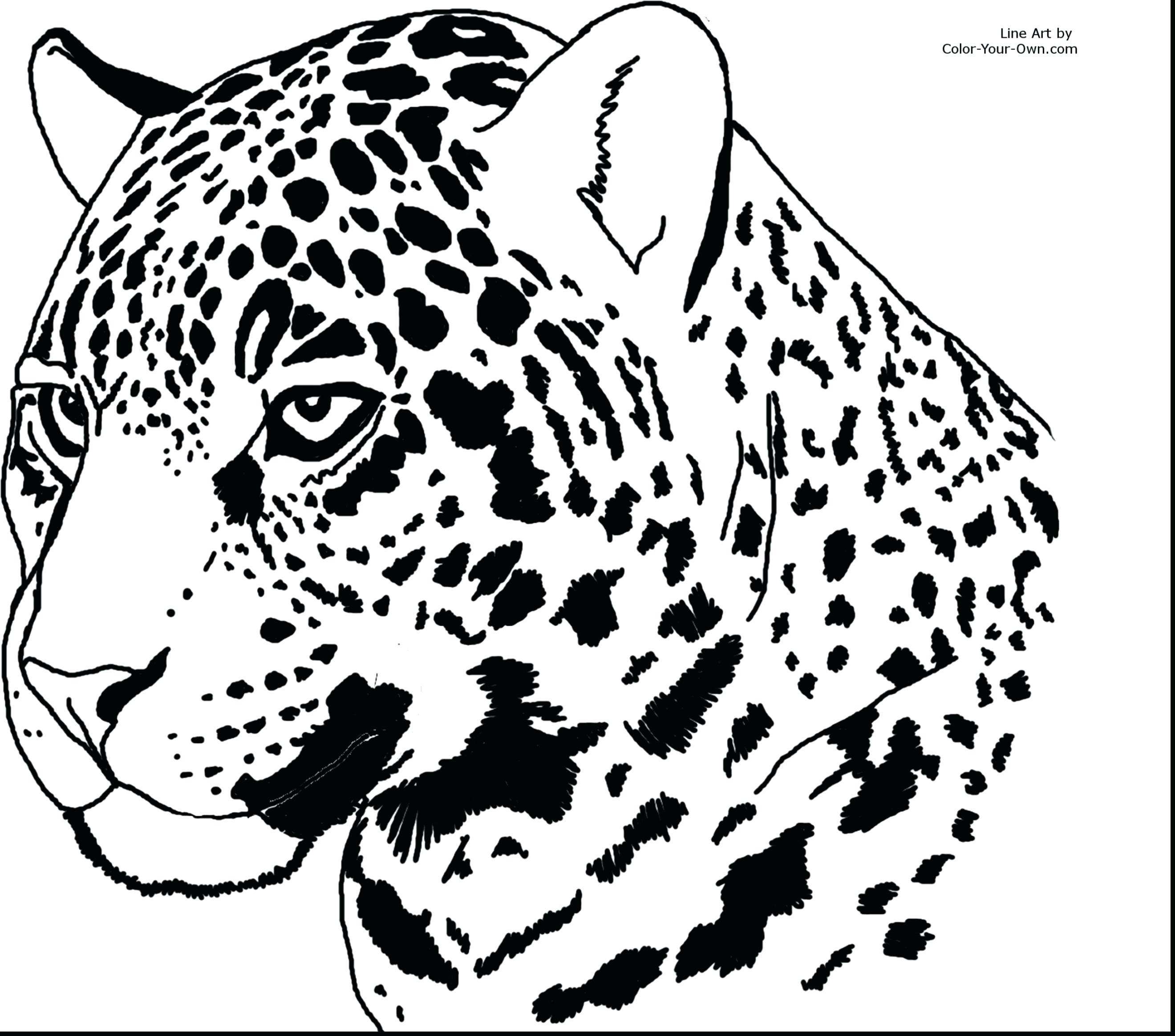 2640x2328 Coloring Cheetah Coloring Page Animal Pages Awesome Outstanding