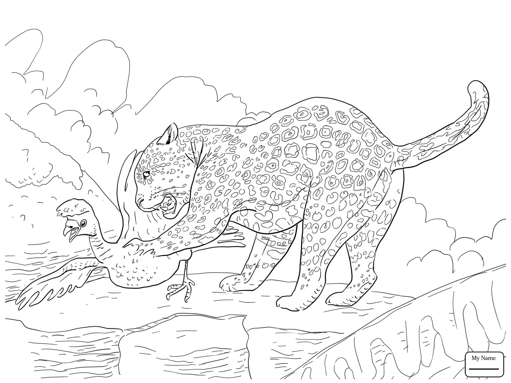 2089x1566 Jaguars Mammals Great Jaguar Coloring Pages For Kids