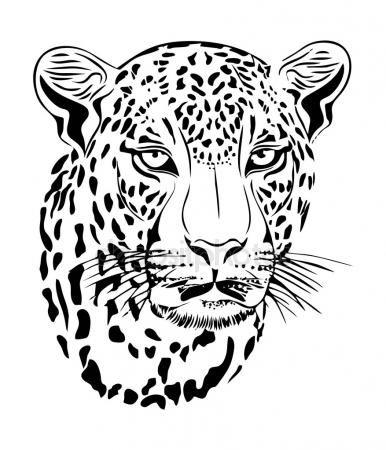 386x450 Jaguar Stock Vectors, Royalty Free Jaguar Illustrations