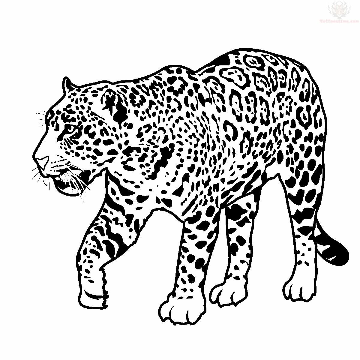 1200x1200 Jaguar Walking Tattoo Design