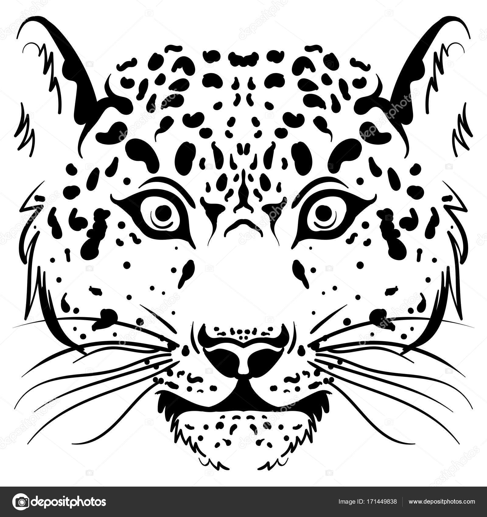 1600x1700 Black And White Vector Sketch Leopard Face Stock Vector