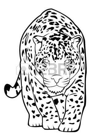 319x450 Drawn Jaguar Black And White