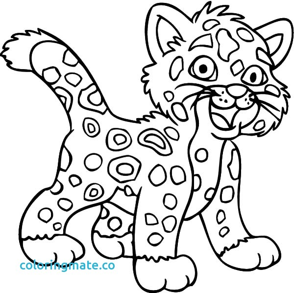 600x598 Jaguar Coloring Pages Awesome Baby Jaguar Coloring Pages