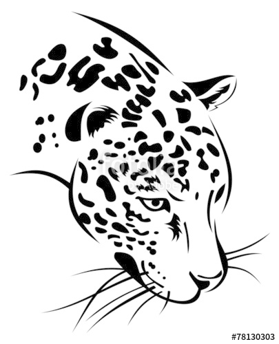 405x500 Jaguar Head Stock Image And Royalty Free Vector Files On Fotolia
