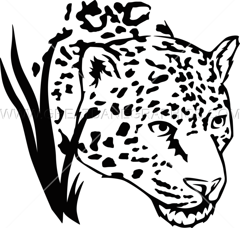 825x783 Jaguar In Grass Production Ready Artwork For T Shirt Printing