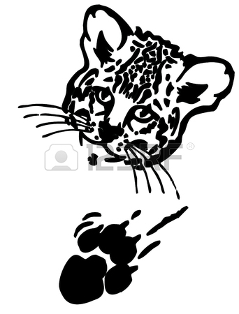 342x450 Leopard Puma Or Jaguar Face Realistic Graphics With Print