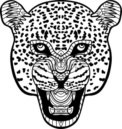 426x450 Monochrome Hand Drawn Ink Drawing. Painted Jaguar On White