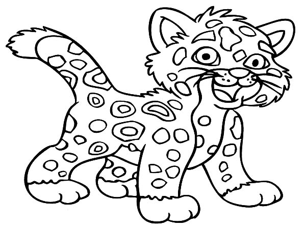 600x450 Baby Jaguar Coloring Pages Bulk Color