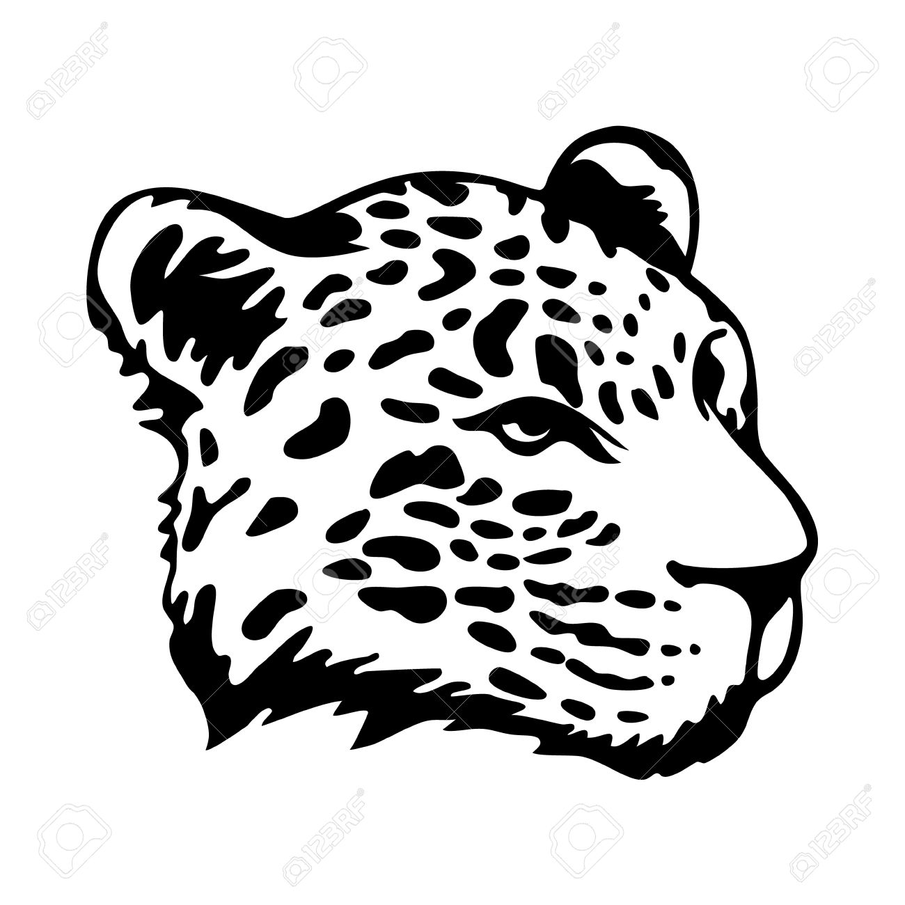 1300x1300 Stylize Jaguars Head Isolated On White Background Royalty Free