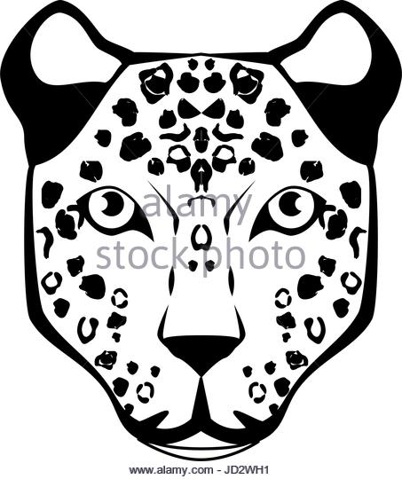453x540 Black Jaguar Animal Stock Photos Amp Black Jaguar Animal Stock