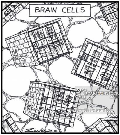 400x451 Cerebellum Cartoons And Comics