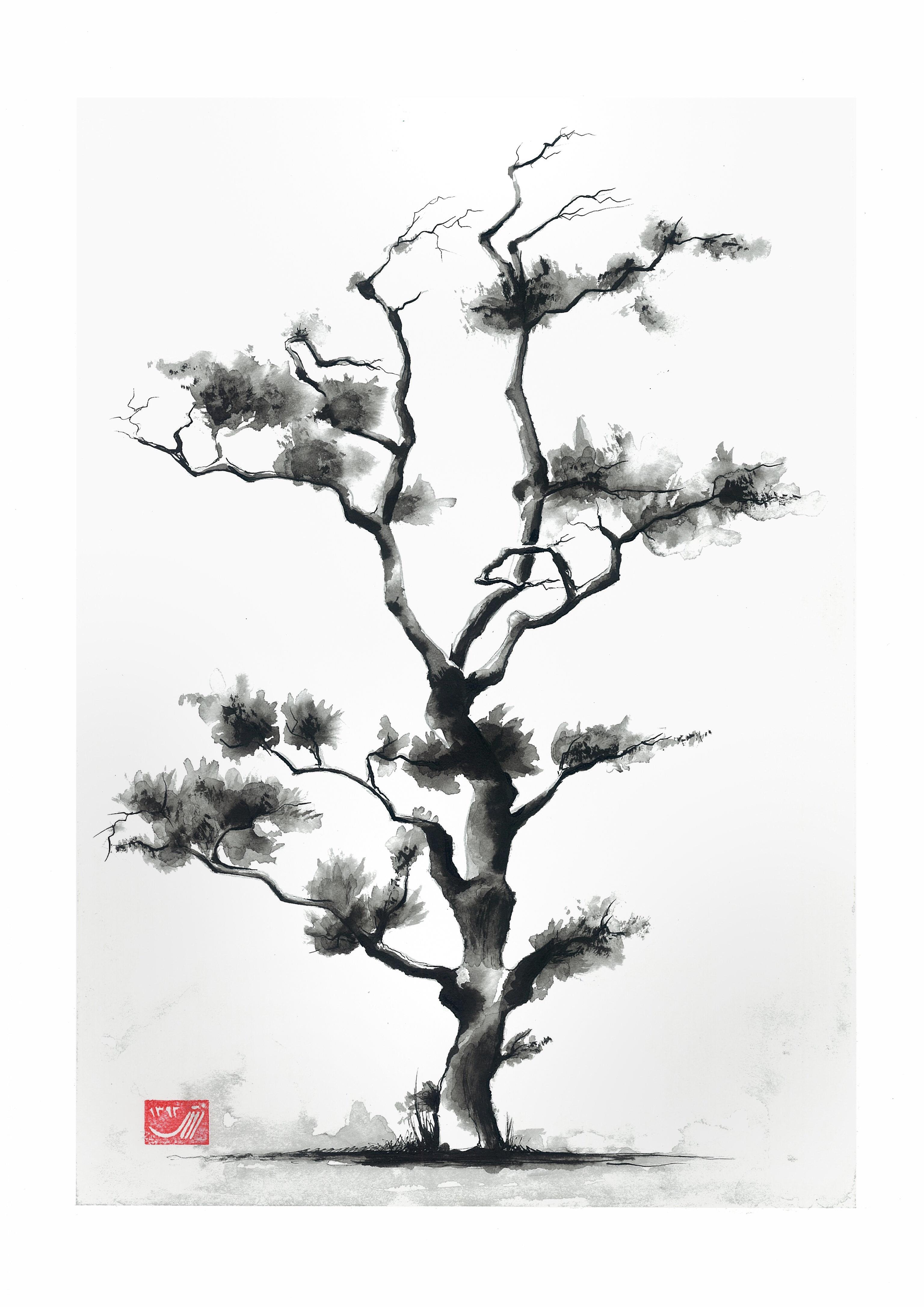 3072x4344 Street Tree In From Japan By Sedighe