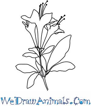 300x350 Japanese Flowers Drawings. Beautiful Orange Flower Tattoo. My