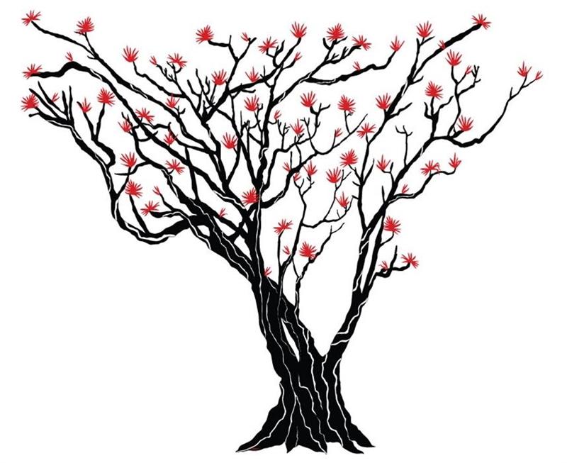 800x653 Japanese Maple Tree